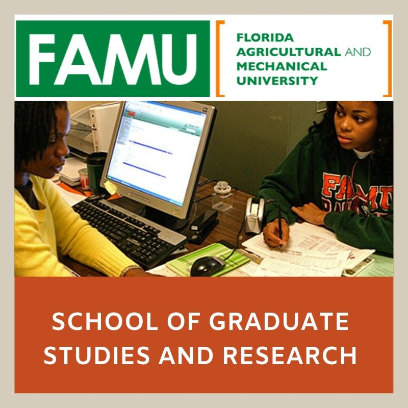 FAMU Theses & Dissertations